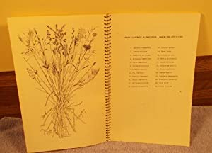 Grasses and Grass Like Plants of Montana, Idaho, Washington and Alberta and British Columbia: C. ...