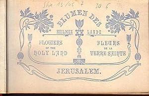 Jerusalem. Blumen des heiligen Lande. Flowers of: Jerusalem. -