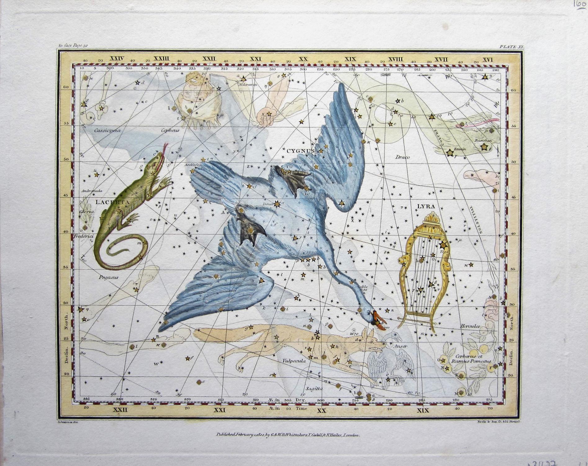 Swan: Jamieson, Alexander