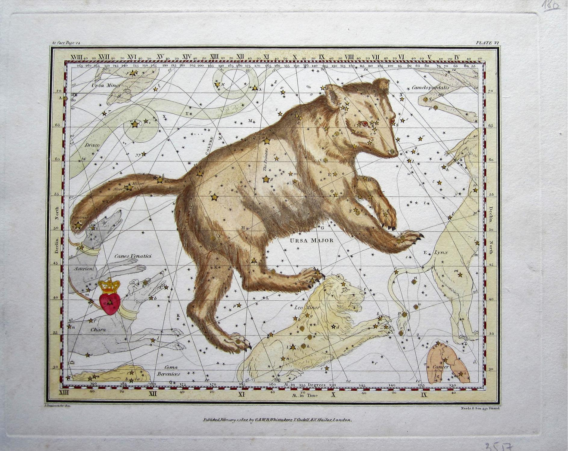Great Bear: Jamieson, Alexander