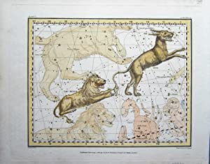 Lion and Lynx: Jamieson, Alexander