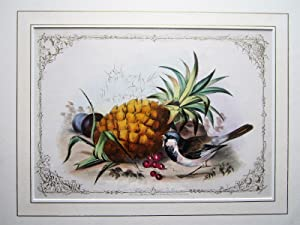 Pineapple and Plums
