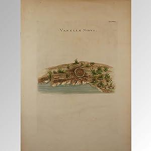VANELLAE NIDUS: Count Luigi Ferdinando