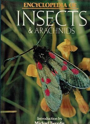 Encyclopedia Of Insects And Arachnids