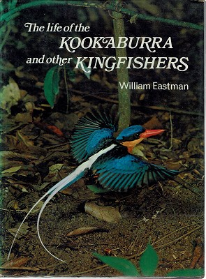 The Life Of The Kookaburra And Other Kingfishers