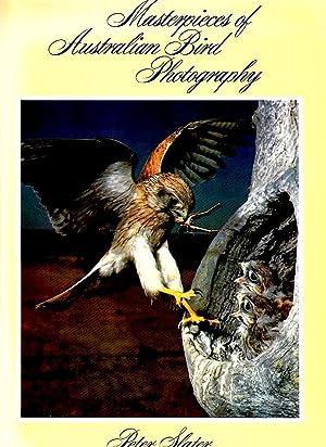 MASTERPIECES OF AUSTRALIAN BIRD PHOTOGRAPHY.: Peter Slater.