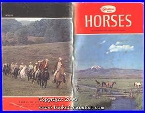 Horses, A Complete Management Program: Carnation Albers