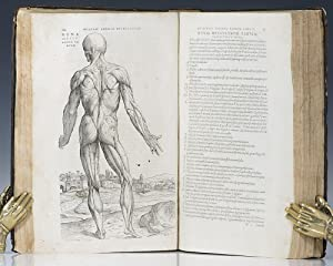 De Humani Corporis Fabrica Libri Septem [On: Vesalius, Andreas