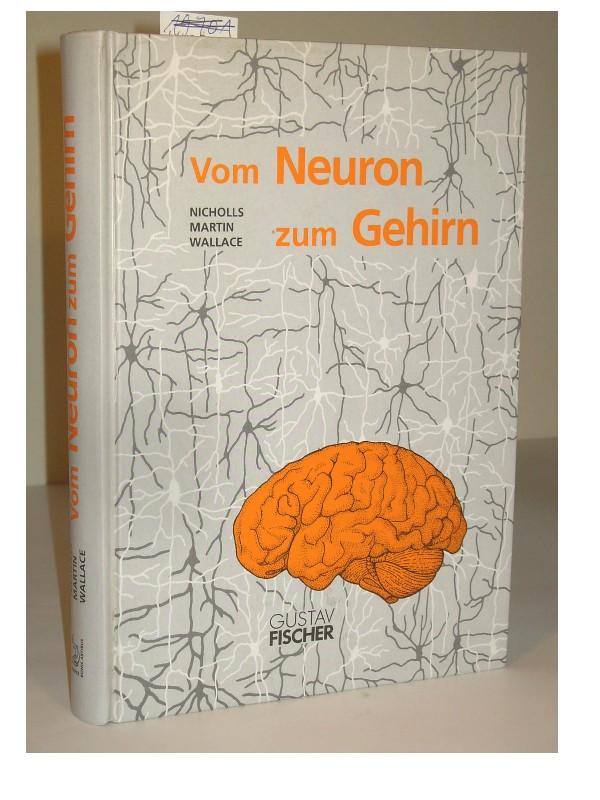 Vom Neuron zum Gehirn. Zum Verständnis der zellulären und ...