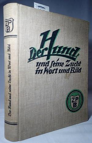 book Prozessmanagement: Ein