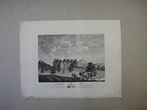 Throsby's Normanton Hall Leicestershire 1791 Antique Print: ex Throsby Leicester
