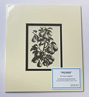 'Pears', 1936 Lithograph