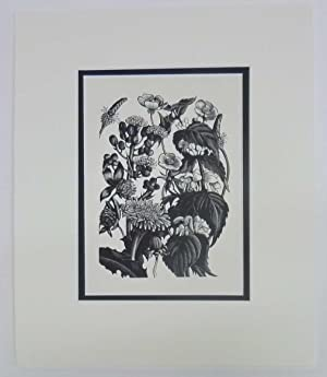 Weeds, 1936 Lithograph