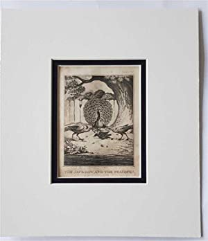 C18th Aquatint engraving print The Jack-Daw & the Peacock Fable 47