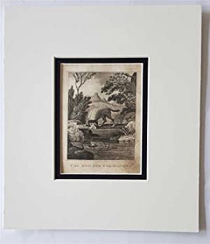 C18th Aquatint engraving print The Dog and the Shadow Fable 80