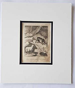 C18th Aquatint engraving print The Wolf and the Lamb Fable 2