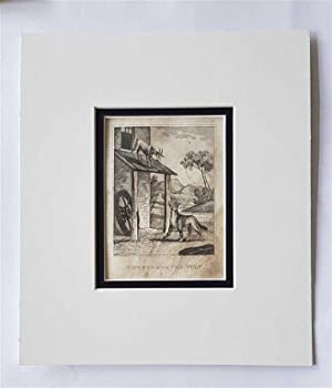 C18th Aquatint engraving print The Kid and the Wolf Fable 138