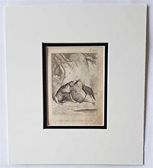 C18th Aquatint engraving print The Wolf and the Crane Fable 82