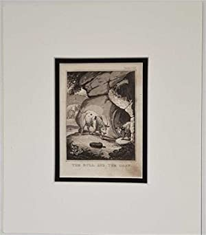 The Bull and the Goat C18th Aquatint engraving print Fable 127