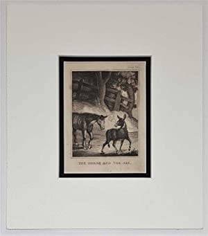 The Horse and the Ass C18th Aquatint engraving print Fable 244