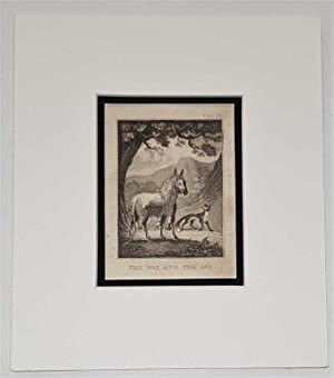 The Fox and the Ass C18th Aquatint engraving print Fable180