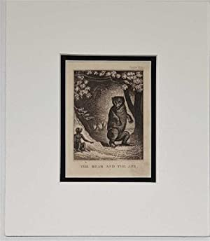 The Bear and the Ape C18th Aquatint engraving print Fable 232