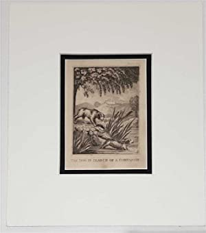 The Dog in Search of a Companion C18th Aquatint engraving print