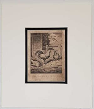 The Cock and the Jewel C18th Aquatint engraving print Fable1