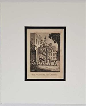 The Terriers and Master C18th Aquatint engraving print Fable 226