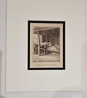 C18th Aquatint engraving print The Dog in the Manger Fable 29