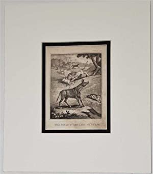 The Ass and the Lion Hunting C18th Aquatint engraving print Fable 115