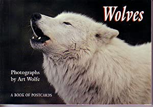 Wolves - A Book of 30 Postcards