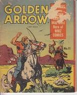 Golden Arrow and the Mystery of Lost City, No. 11