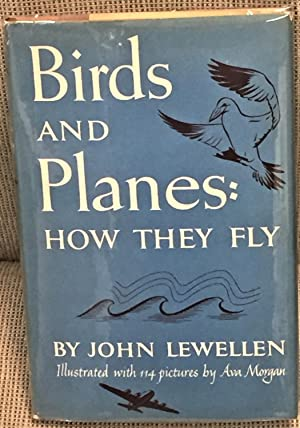 Birds and Planes: How They Fly