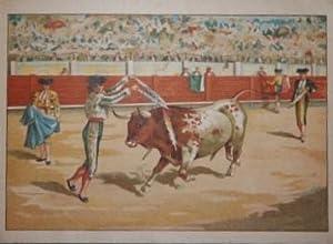 A Los Toros! Viva Espana!