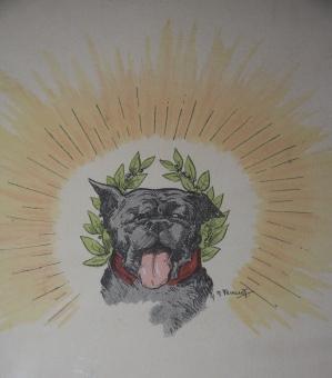 Radic et Paddy. Histoire véridique d un bon & d un mauvais chien: Raymond, L. Illustrations by ...