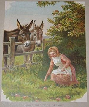 Pretty Farm Pictures. A Big Book for the Little Ones.
