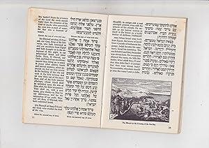 Streit's Hagadah for Passover [Haggadah shel Pesach pesah pesakh pessach]