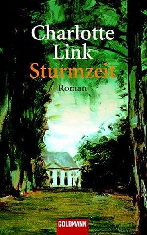 Die Sturmzeit-Trilogie: Sturmzeit: Roman: Link, Charlotte: