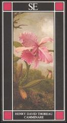 Camminare.: Thoreau,Henry David.