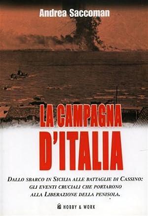 La campagna d'Italia. Dallo sbarco in Sicilia alle battaglie di Cassino: gli eventi cruciali ...