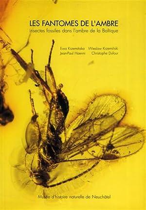 Les fantômes de l'ambre. Insectes fossiles dans l'ambre de la Baltique. Préc...