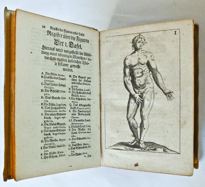 die anatomie des von philip - ZVAB