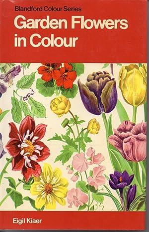 Garden Flowers In Colour: Kiaer, Eigil