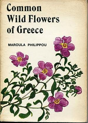 Common Wild Flowers Of Greece: Philippou, Maroula