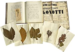 Manuscript Travellogue Accompanied by Ephemera and Botanical Specimens Collected by Austrian Arch...