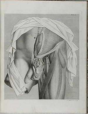 Sull'ernie memorie anatomico-chirurgiche.: SCARPA, Antonio