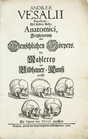Zergliederung dess Menschlichen Cörpers auf Mahlerey und: VESALIUS, Andreas /
