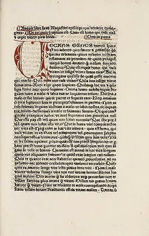 Quinquaginta: AUGUSTINUS, Aurelius