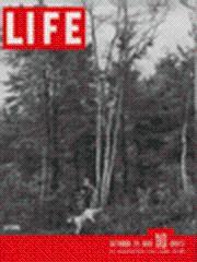 Life Magazine 29 October 1945 Woods Scene: Life Magazine 29